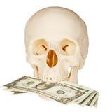 吞食查出的货币头骨白色 免版税库存照片