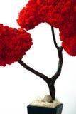 吠声叶子留下老大农场主红色结构树&# 图库摄影