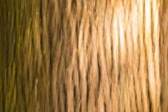吠声抽象自然背景  免版税库存照片