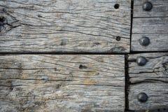 吠声木使用纹理作为自然本底的 库存照片