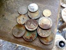 吠声树背景自然木奖牌,硬币,美元,象征,片断,硬币 库存图片