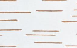 吠声桦树纹理 库存照片