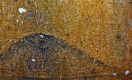 吠声眼睛自然本质纹理木头 免版税图库摄影