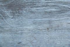 吠声背景纹理,树纹理,木背景 图库摄影