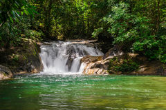 吨皮带瀑布在国家公园Ranong 图库摄影