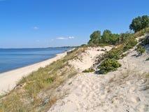 含沙沙丘维斯瓦河看法和海岸吐 晴朗蓝色日房子加里宁格勒地区屋顶俄国的夏天 免版税库存照片