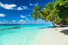 含沙海滩的海洋 免版税库存图片