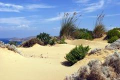 含沙的沙丘 库存照片