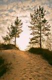 含沙的Paradise Road 免版税库存照片