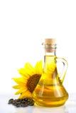 含油种子向日葵 免版税库存照片