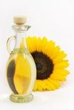含油种子向日葵 免版税图库摄影