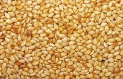 含油种子芝麻 免版税库存照片