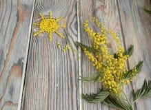 含羞草和太阳 免版税库存照片