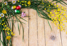 含羞草花和朱古力蛋的装饰构成为 免版税图库摄影