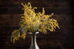 含羞草花在一个美丽的花瓶的在木背景 图库摄影