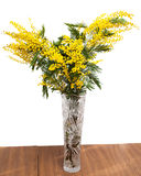 含羞草花在一个高花瓶的在桌上 免版税图库摄影