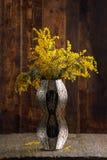 含羞草花束在一个精妙的花瓶的 库存图片
