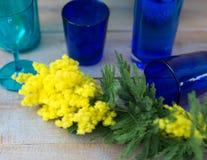 含羞草黄色花在与蓝色花瓶的木桌上服务 库存照片