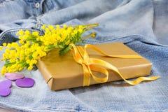 含羞草pudica和一个被包裹的礼物在蓝色牛仔裤 免版税库存图片