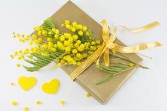 含羞草pudica和一个被包裹的礼物花束  免版税库存图片