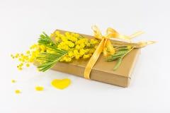 含羞草pudica和一个被包裹的礼物 免版税图库摄影