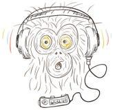 听猴子音乐 图库摄影