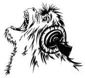 听猴子音乐 免版税库存图片