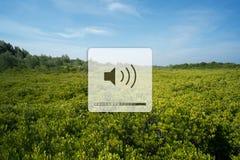 听自然的声音 免版税库存照片