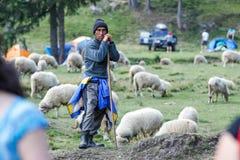听见的绵羊 库存图片