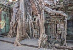 吴哥城,柬埔寨的被雕刻的面孔 库存照片