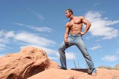 吸收蓝色牛仔裤男性模型性感的sixpack 库存照片