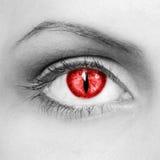 吸血鬼眼睛 库存图片