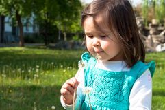 吹一个蒲公英的幼儿在公园 免版税库存照片