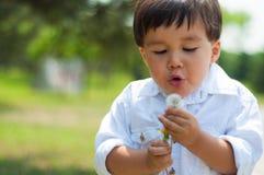 吹一个蒲公英的年轻男孩在公园 免版税库存图片