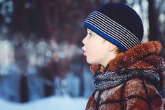 吹冷淡的空气的小男孩在冬天森林里 免版税库存图片