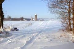吹在农村路的雪 免版税库存照片