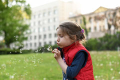 吹在城市街道上的一朵蒲公英花的一个小女孩 免版税库存图片