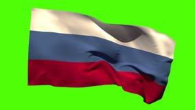 吹在微风的俄罗斯国旗 股票视频