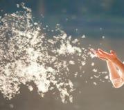 吹在蒲公英的女孩 明亮的太阳发光与后面光 库存照片