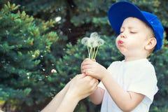 吹在蒲公英的母亲和小儿子 免版税库存照片