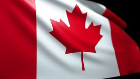 吹在风无缝的使成环的Luma表面无光泽的4K的加拿大旗子背景 皇族释放例证