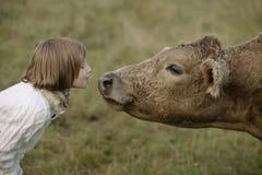 吹在鼻子的小女孩美丽的母牛 生活方式画象 库存照片