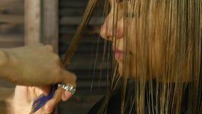 吹干的头发 有打击烘干机的美发师干燥客户头发在美容院 慢的行动 影视素材