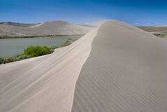 吹的沙丘沙子风 库存照片
