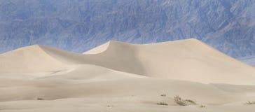 吹的沙漠沙丘沙子 库存照片