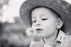 吹的男孩蒲公英少许 晴朗的夏天 库存照片