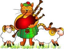 吹风笛者猫 库存图片