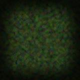 呈杂色的背景绿色 库存图片
