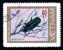 呈杂色的蓝绿色甲虫伐木工人,大约1981年 免版税库存照片