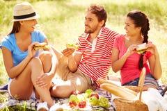 周末野餐 免版税库存照片